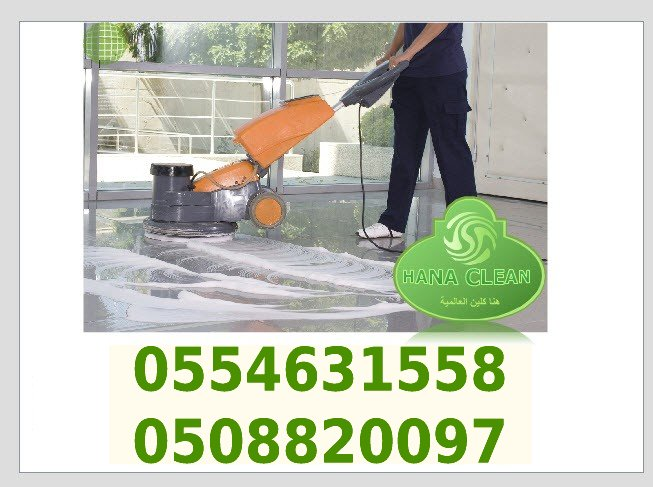 rhiayd cleaning services