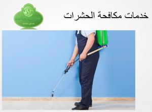 مكافحة حشرات - شركات رش مبيد